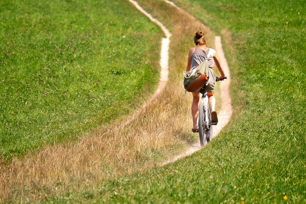 cyclists, away, meadow